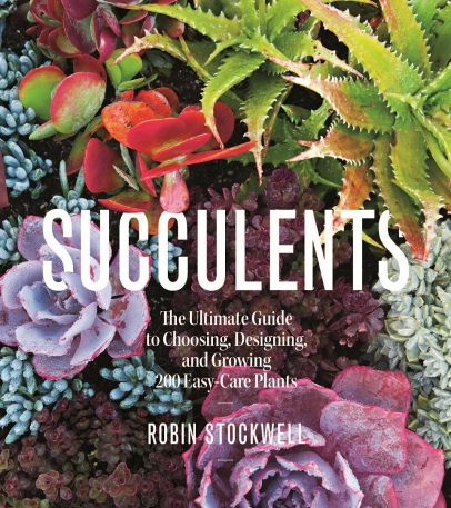 Succulents: The Ultimate Guide