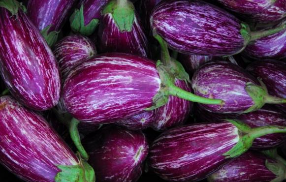 eggplant, in-season summer vegetables