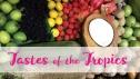 Tastes of the Tropics Podcast